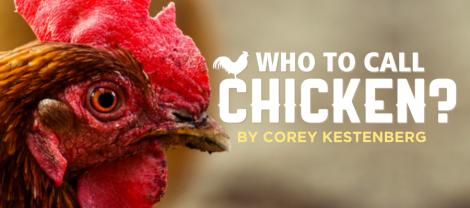 Corey Kestenberg - Chicken