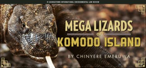 Chi Emeruwa - Komodo Dragons