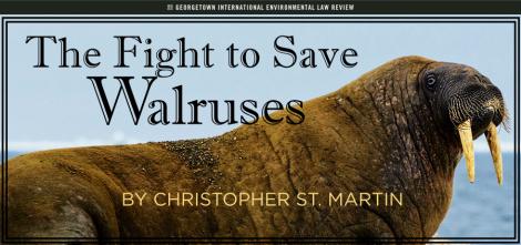 ChrisStMartin Walrus Title Card